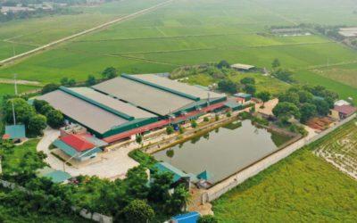 Development in Vietnam
