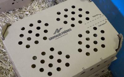L'Ecobox : une innovation Bien-Être Animal signée Grimaud Frères