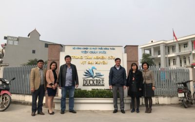 New successful Grand-Parent Stock duck deliveries to DAI XUYEN and THUY PHUONG INSTITUTES in Vietnam!